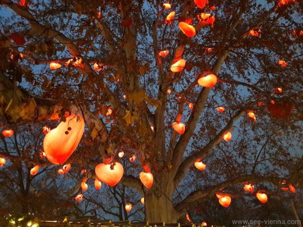 Виена Коледни осветления Частни обиколки