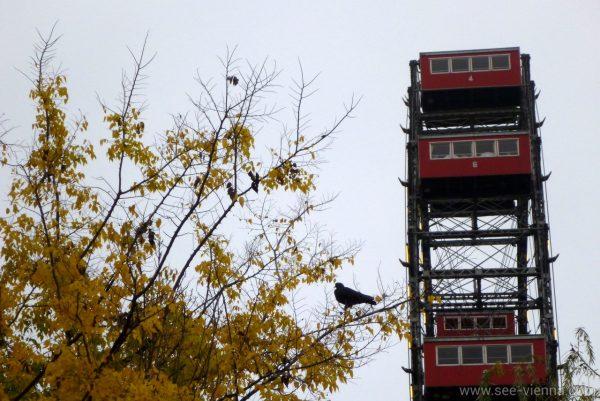 Vienna Prater Ruota Panoramica Tour Privati