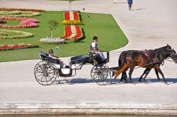 Vienna Schonbrunn Parco Tour Privati