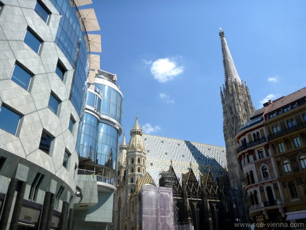 Vienna St Stephens Haashaus Private Tours