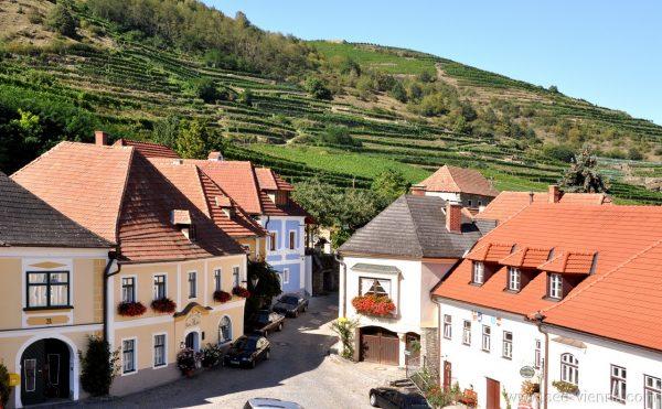 Wachau Weingarten Private Stadtfuhrungen
