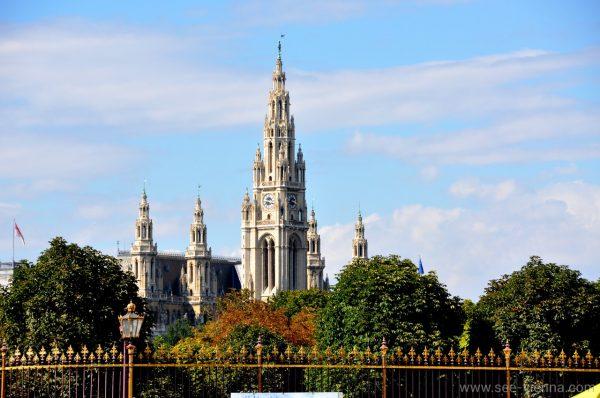 Wien Rathaus vom Volksgarten Private Stadtfuhrungen