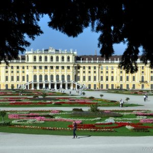 Wien Schonbrunn Private Stadtfuhrungen