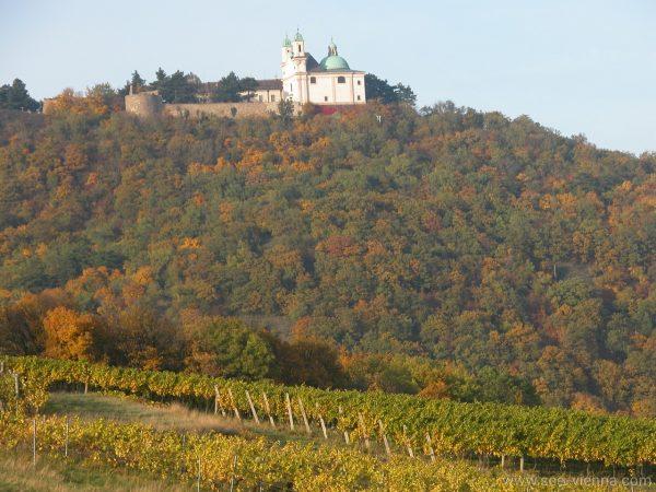 Wien Wanderung Leopoldsberg