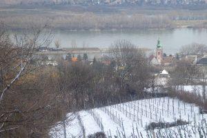 Danube Kahlenbergerdorf pixel
