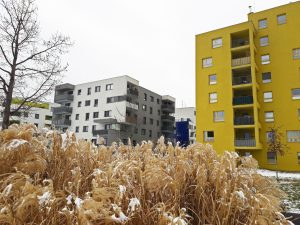 Seestadt Vienna living at the park